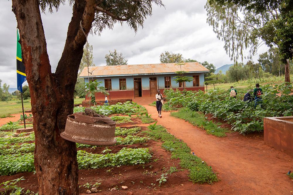 arbeiten_in_zeiten_von_corona_-_tansania_-_stiftung_kinderdorf_pestalozzi