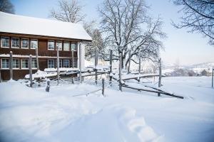 besucherzentrum_-_winter_spielplatz_-_kinderdorf_pestalozzi