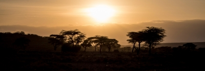 projekte_-_ostafrika_-_hauptseite_-_header_-_savanne